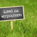 Pachtvertrag Landwirtschaft